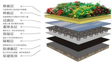 排水板图纸